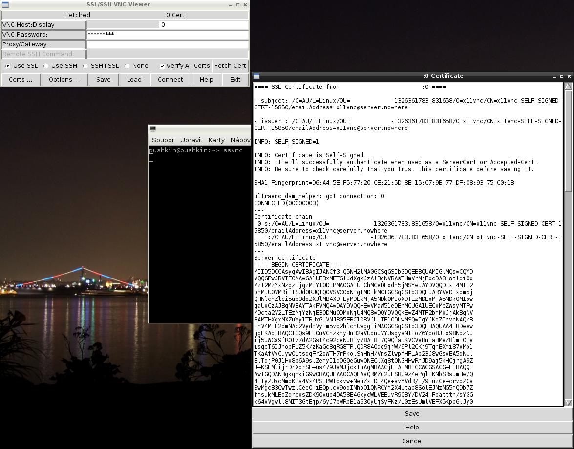 SSVNC, prohlížení vertifikátu