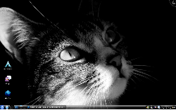Simplicity and beauty itself: KDE 4.2