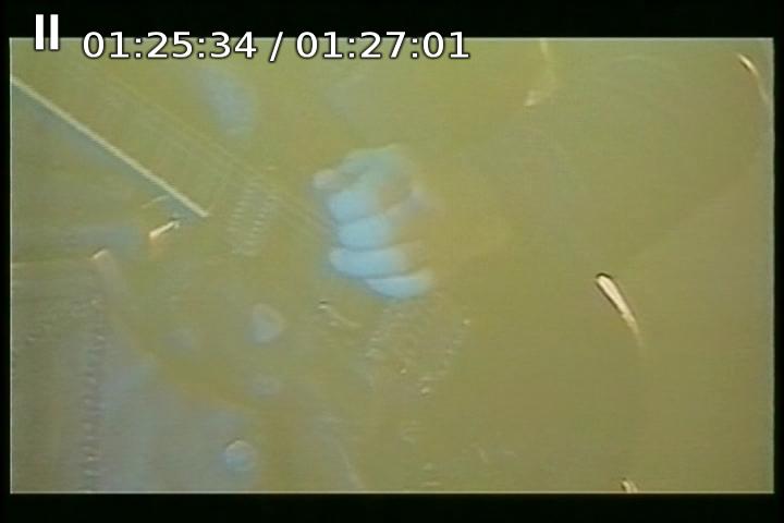 Originál na DVD