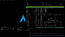 Archlinux - monsterwm