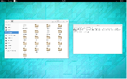 FreeBSD 10.1 + Gnome-shell